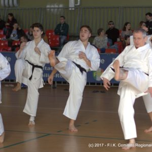 26.03.2017 2° Stage Karate Bologna